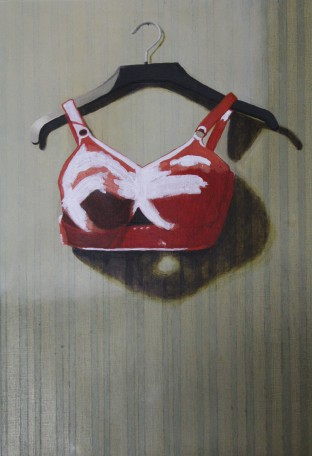 Work in progress Bra 13